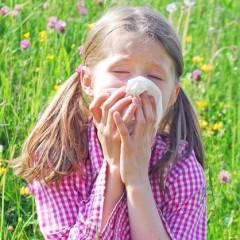Früher Pollenflug: Was Sie für Ihre Gesundheit tun können