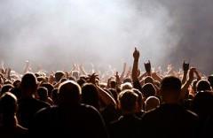 Für jeden was dabei: Die Festival-Highlights 2014