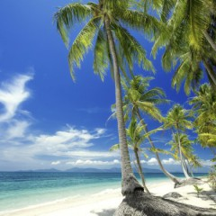 Karibikurlaub – Inselhopping zu den schönsten Stränden