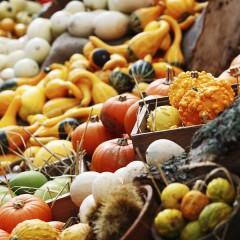 Gesunde Küche für den Herbst