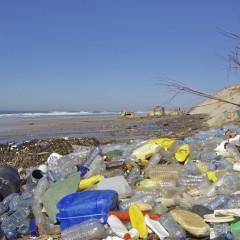 Die EU plant den Verbrauch von Plastiktüten zu reduzieren