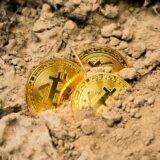 Wird 2021 das Jahr der Kryptowährungen?